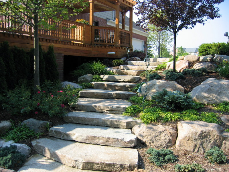 Forest Backyard Ideas : Landscaping Ideas  Sherwood Forest Garden Center
